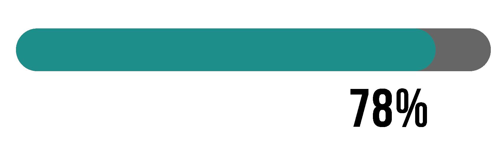 A progress bar